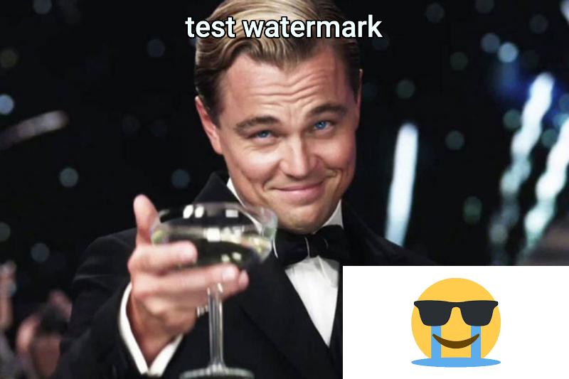 test watermark...